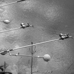 ловля сазана весной на поплавочную удочку